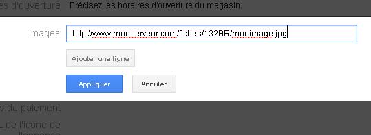 macro-image-google-places